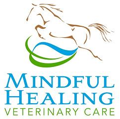 Mindful Healing3.png