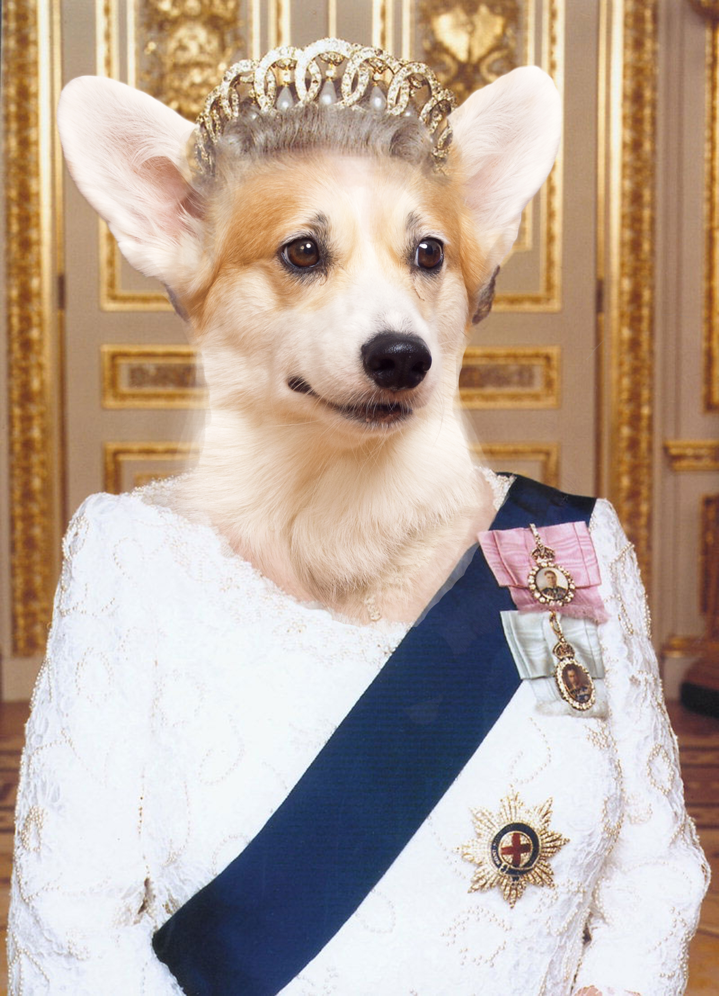 Kudzu the Corgi as Queen Elizabeth