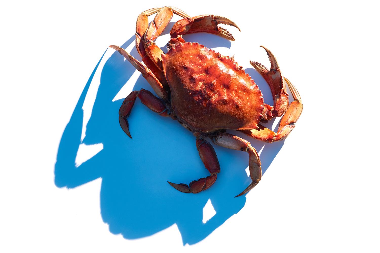 Seafood_10.jpg