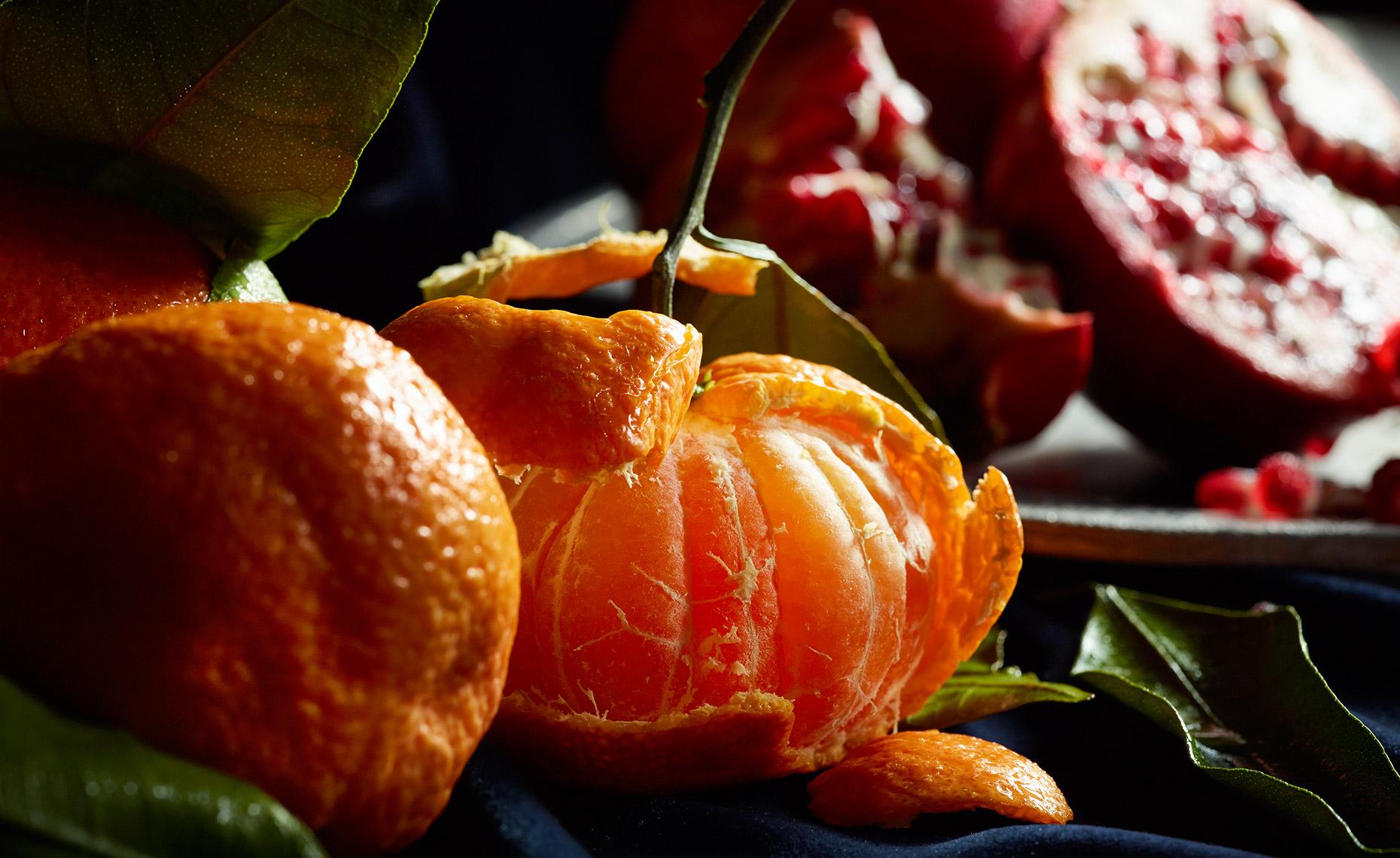 04-flemish-birds-oranges-web-wide.jpg