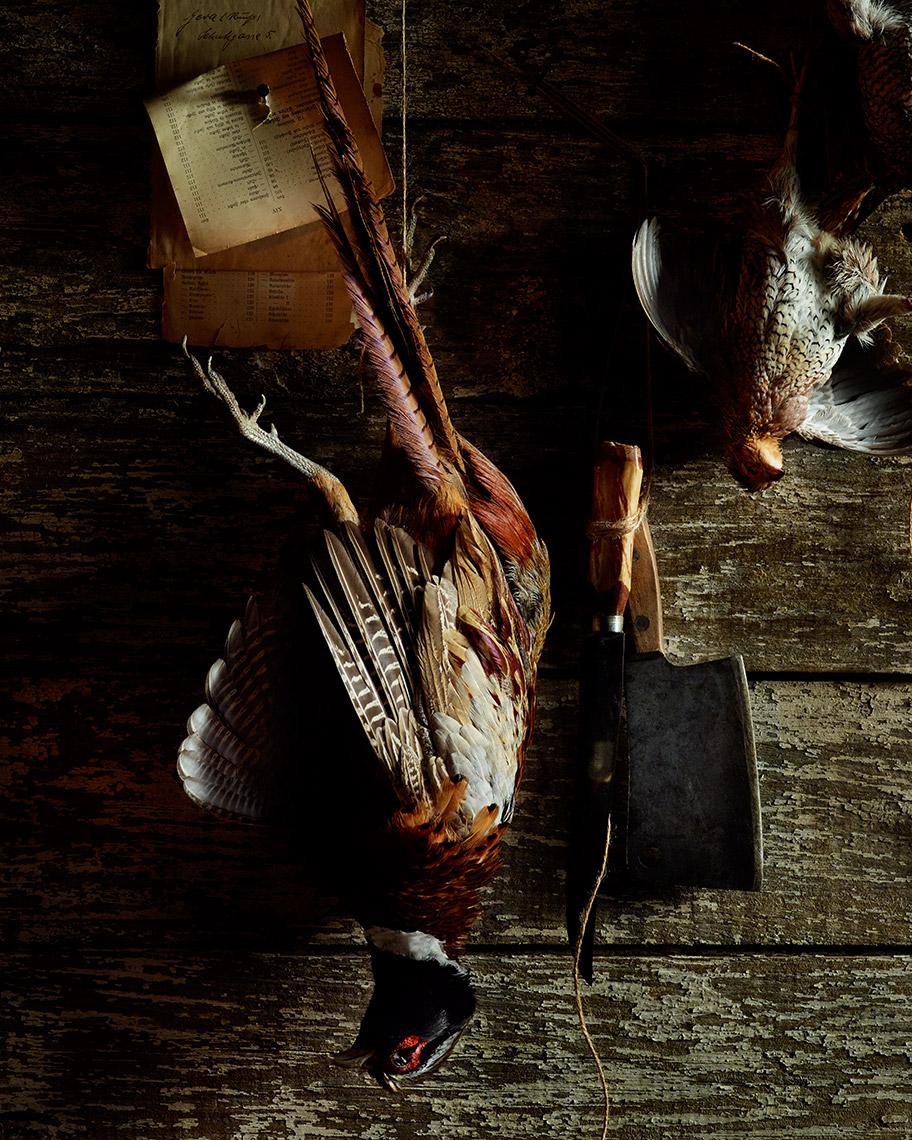 04-flemish-pheasant-web.jpg
