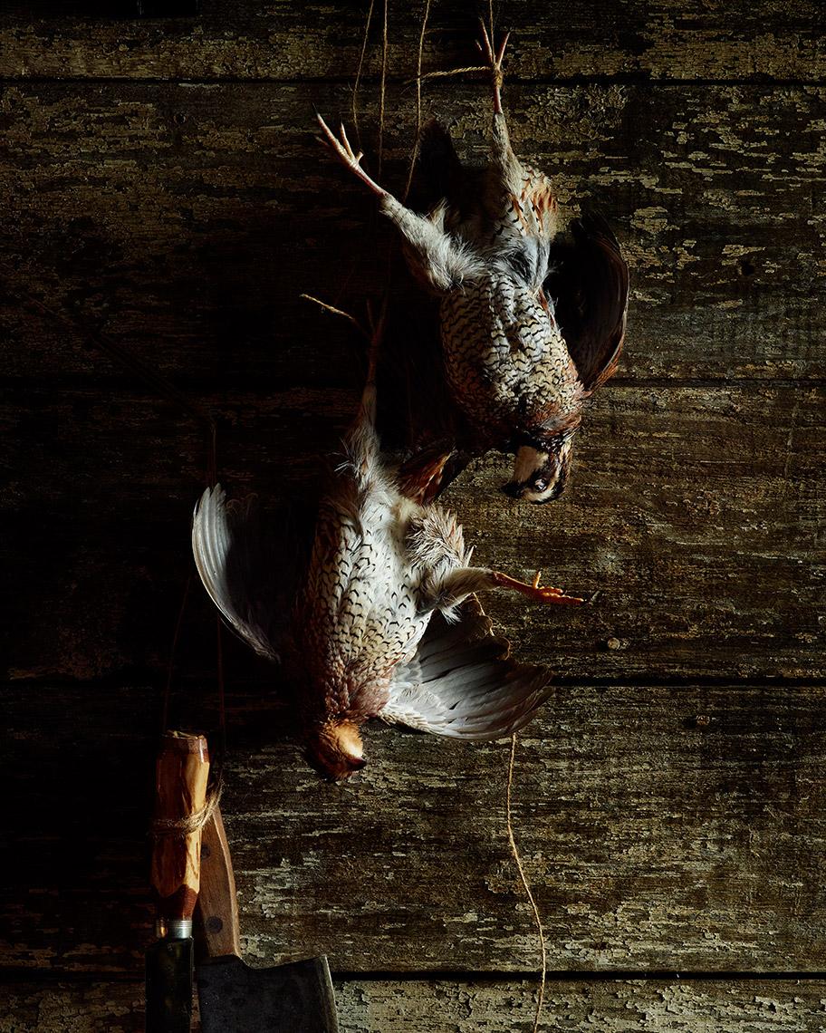 04-flemish-birds-quail-hanging-web.jpg