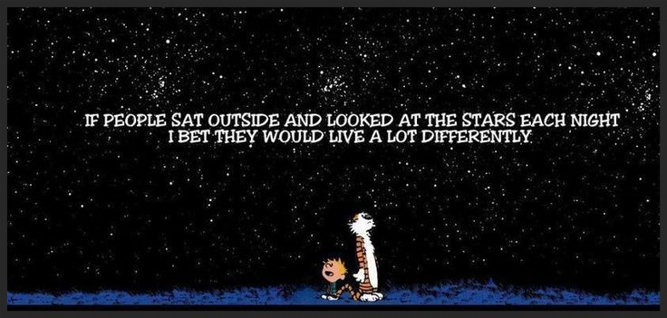 An excerpt from  Calvin and Hobbes by Bill Watterson that was some of the contributing inspiration for Orion.
