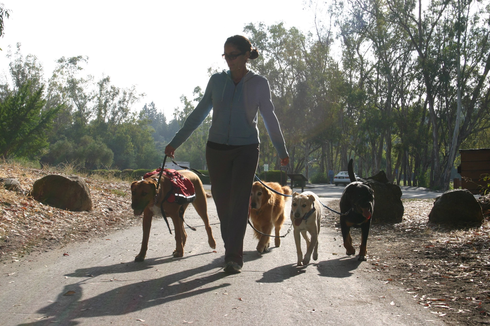 a small pack in vasona. it's my favorite place to pack walk.
