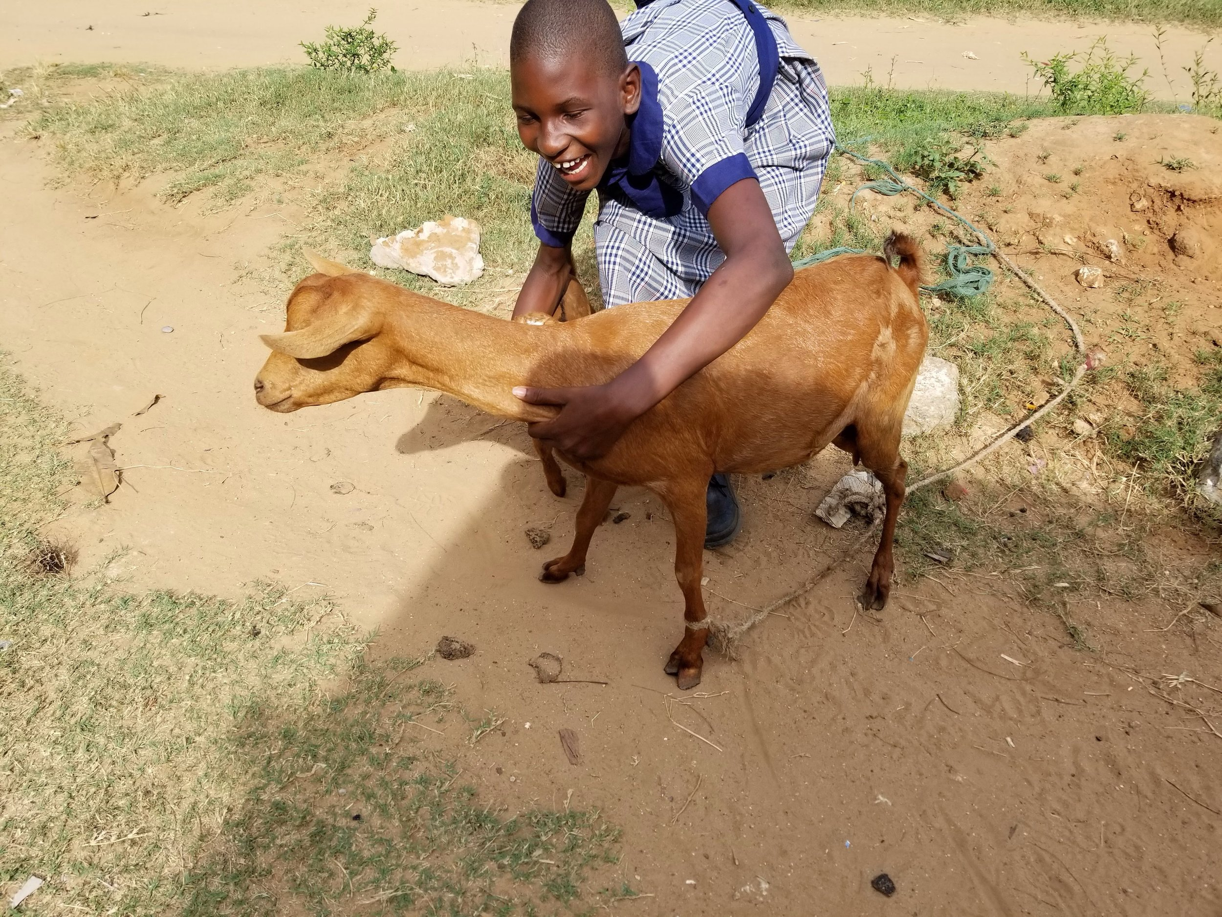 I wish you could have heard her laughter as she tried to get a goat to pose for a picture!!
