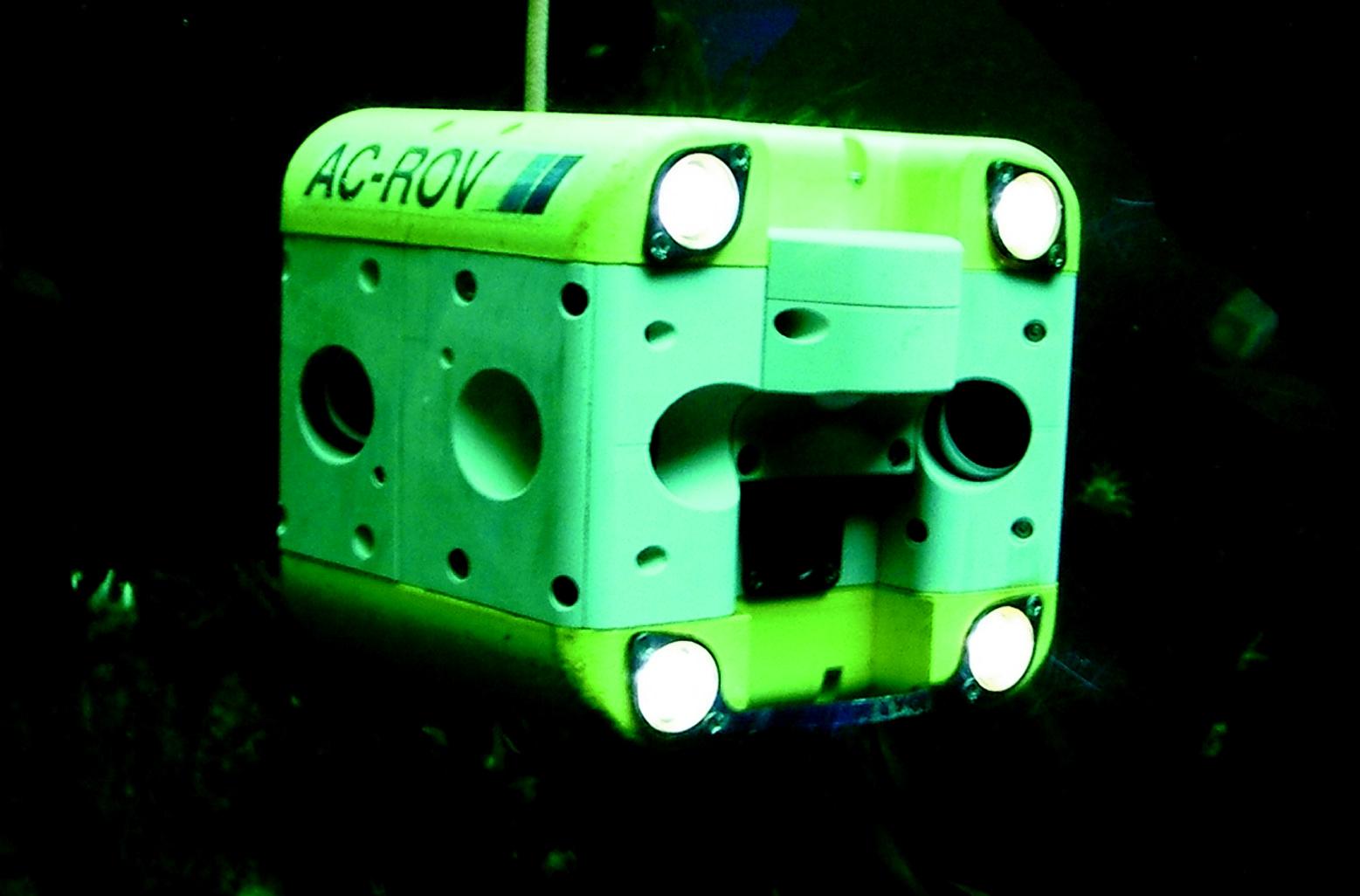 acrov5 - Copy.jpg