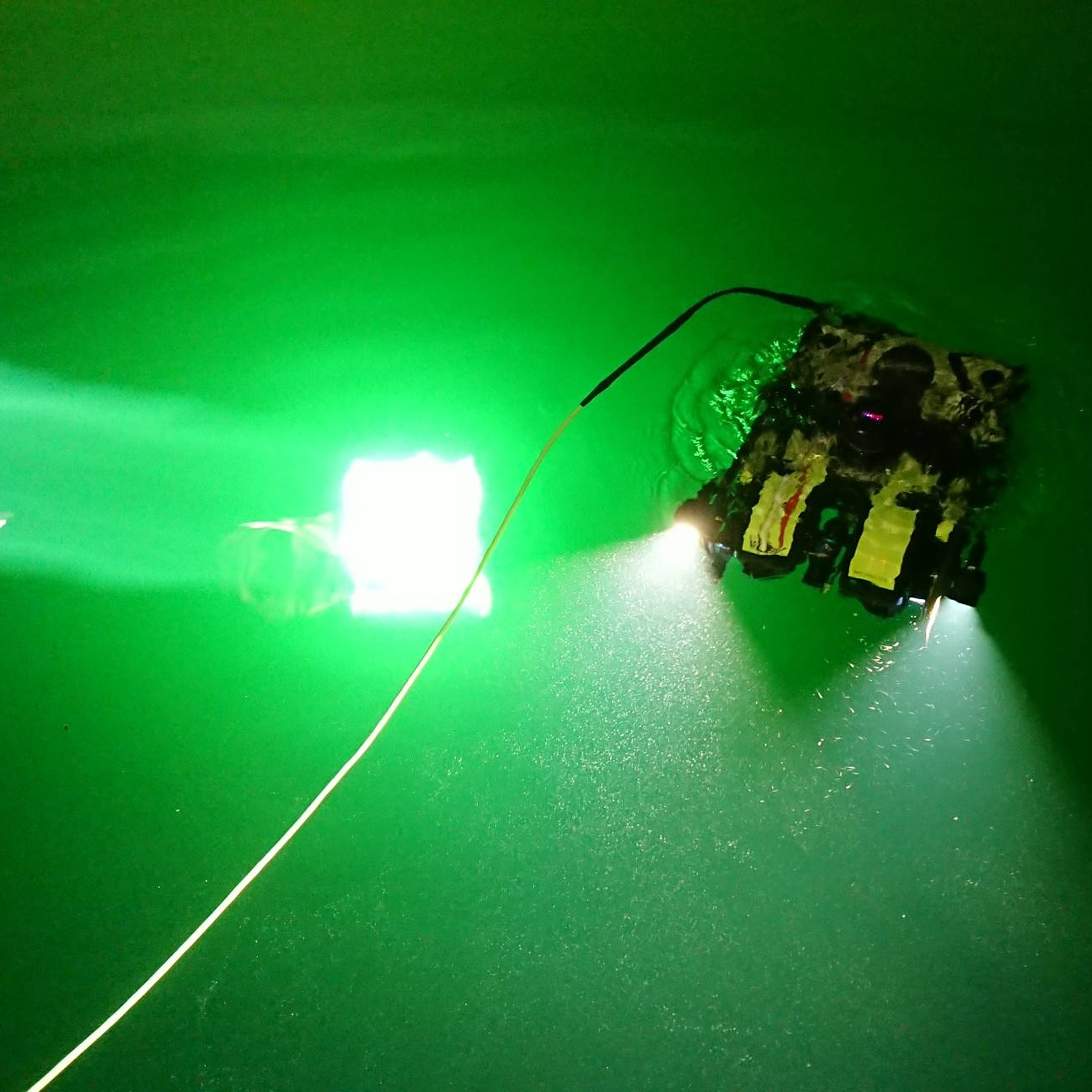 AUS-ROV SeaBotix ROV Inspections.jpg