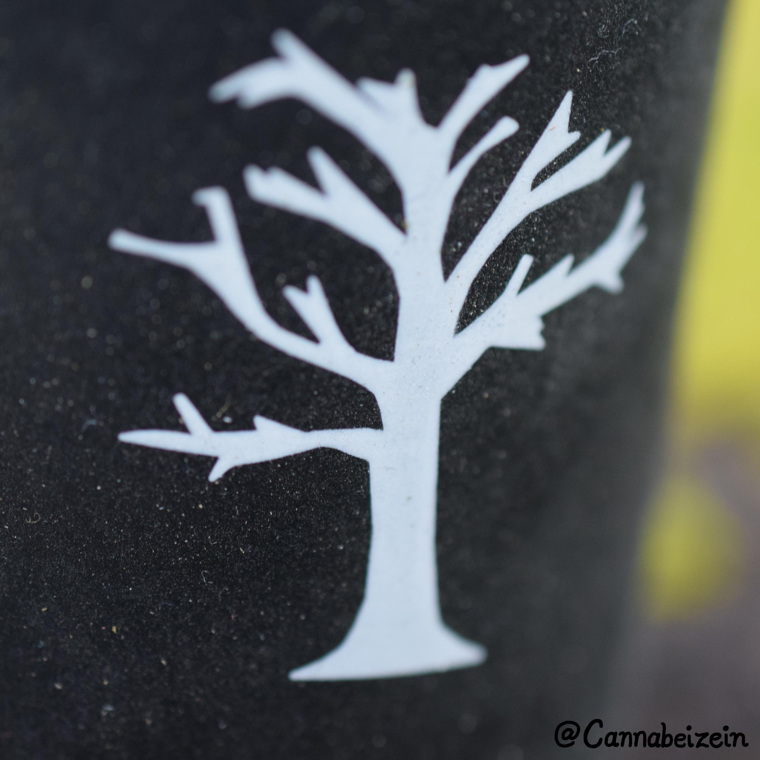 Mason Re Tree