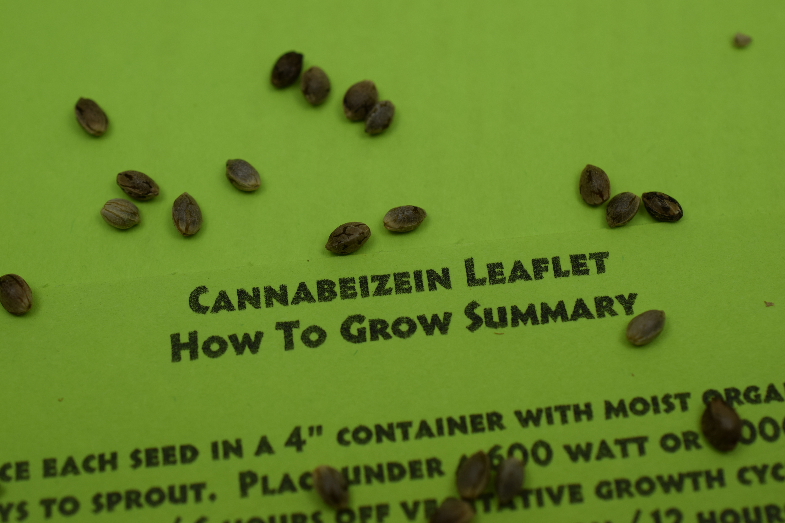 Cannabeizein Leaflet: How To Grow Summary