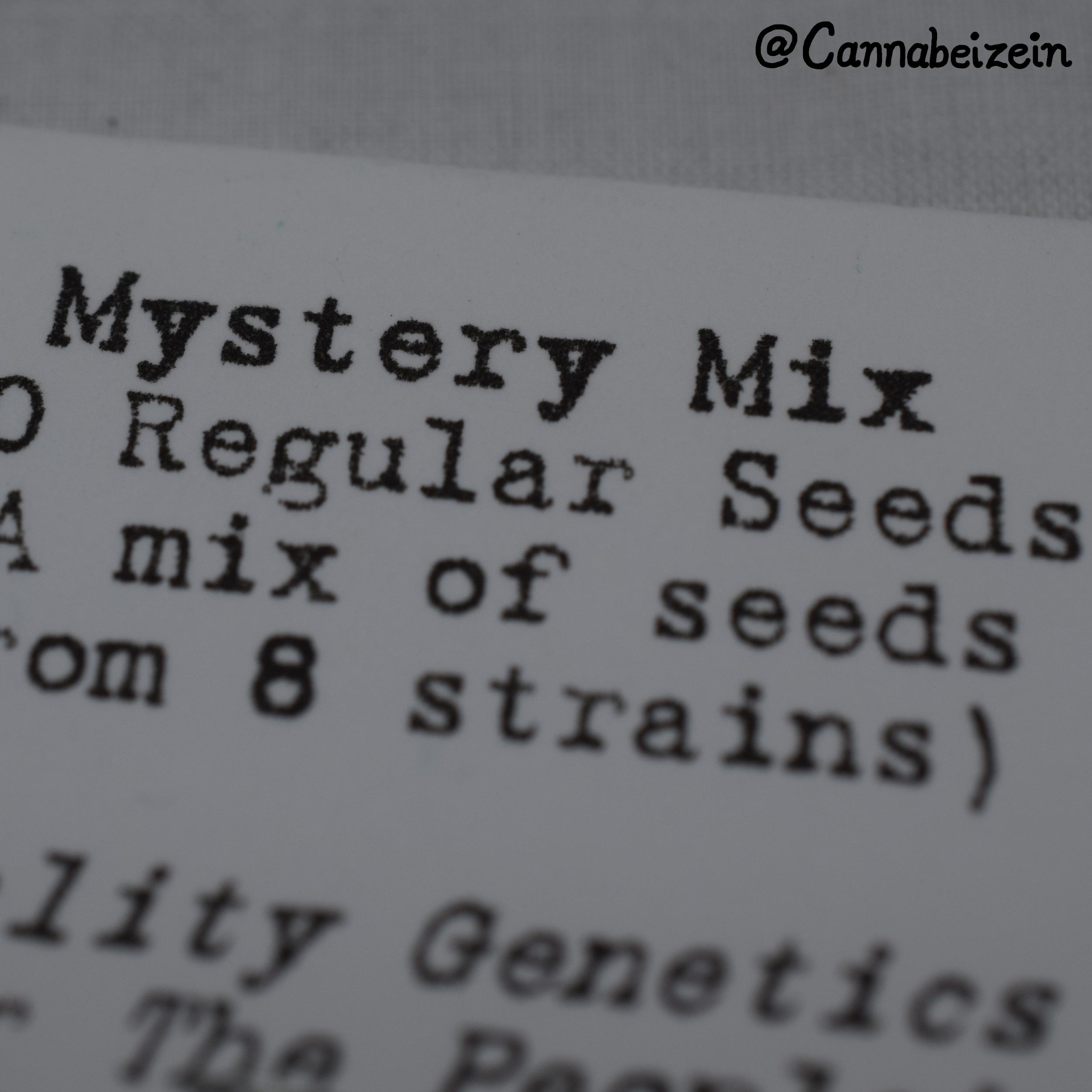 Cannabeizein 0087 - Mystery Mix - DSC_1073 copy.jpg