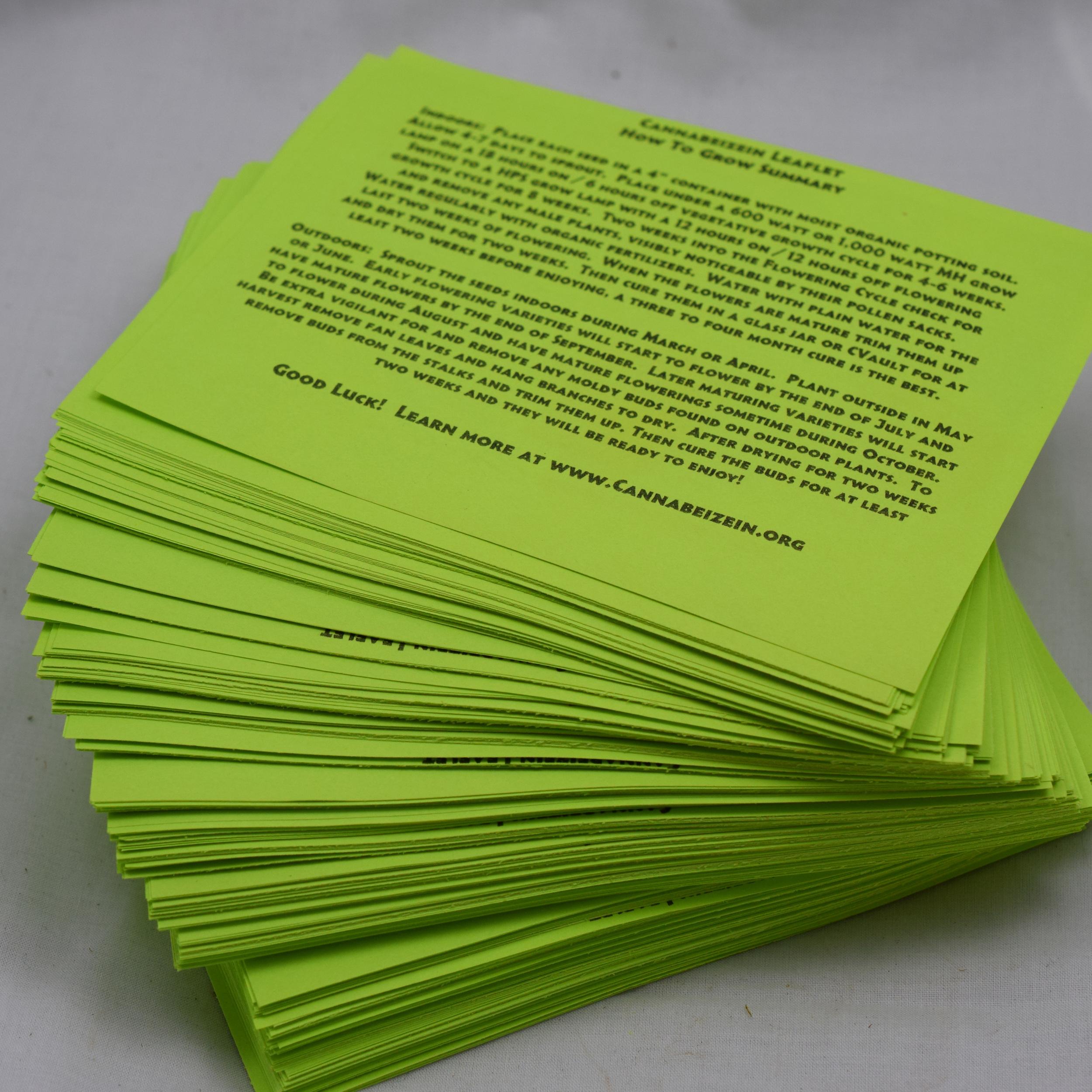 Cannabeizein 0183 - Leaflet - DSC_0050.jpg