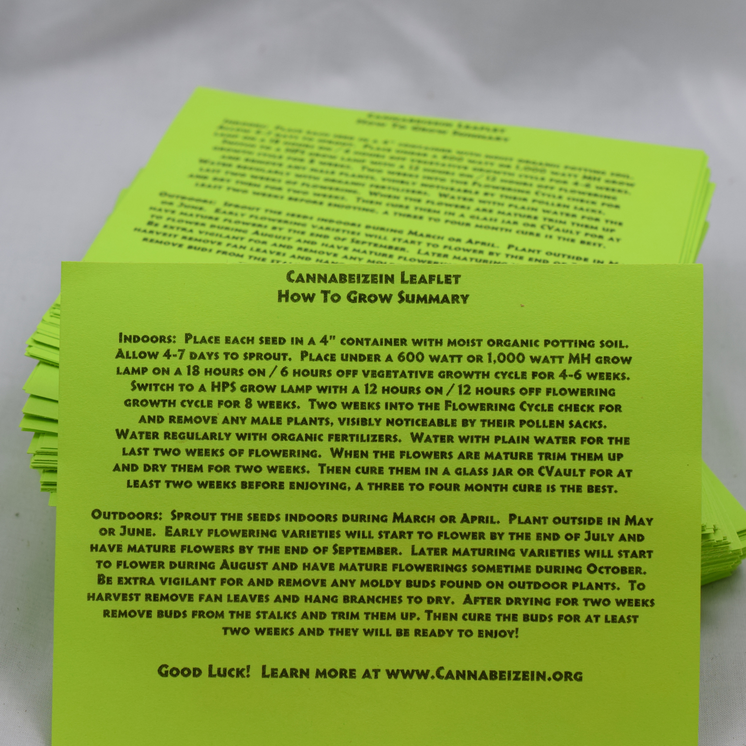 Cannabeizein 0184 - Leaflet - DSC_0053.jpg