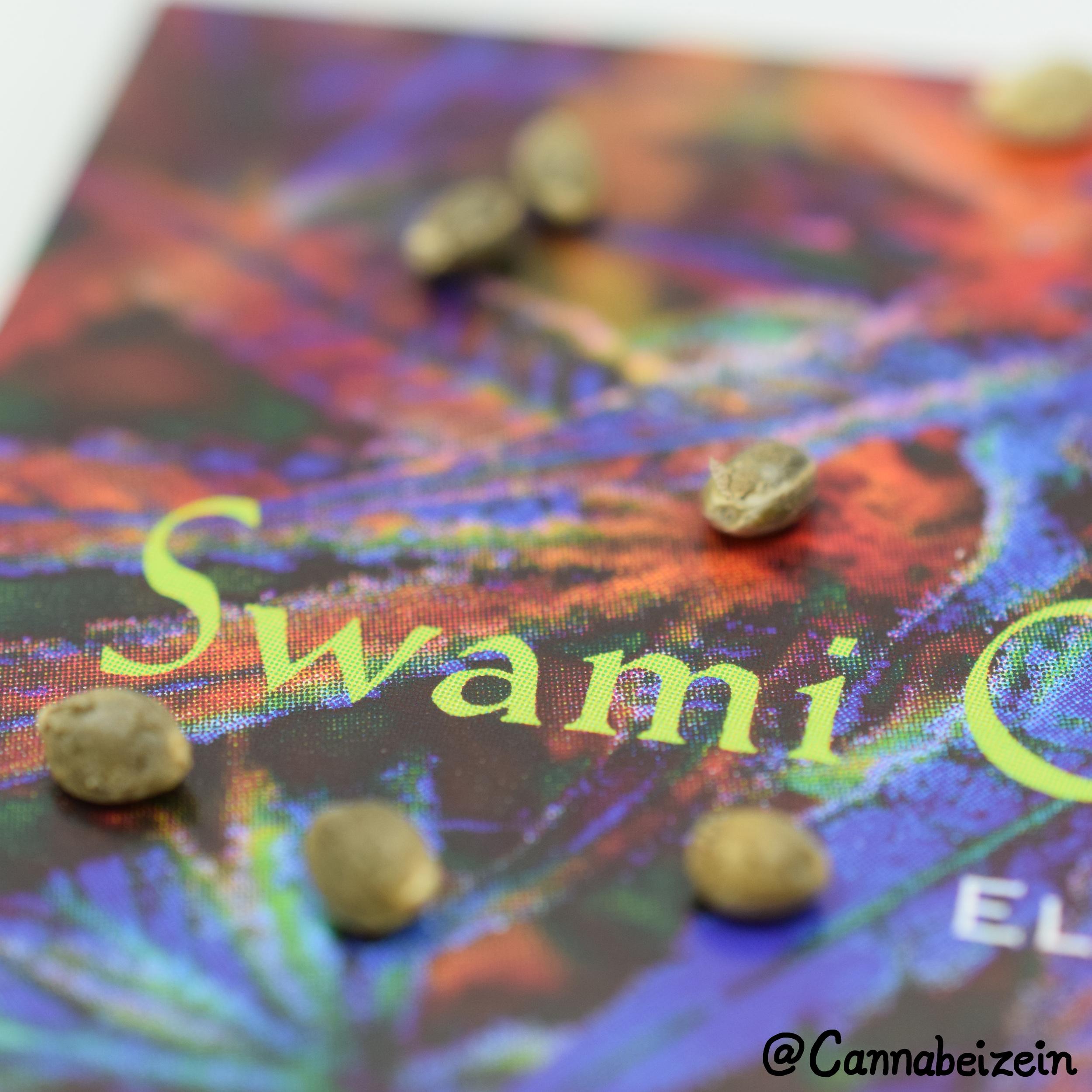 Cannabeizein 0203 - Swami Seeds - DSC_0197 copy.jpg