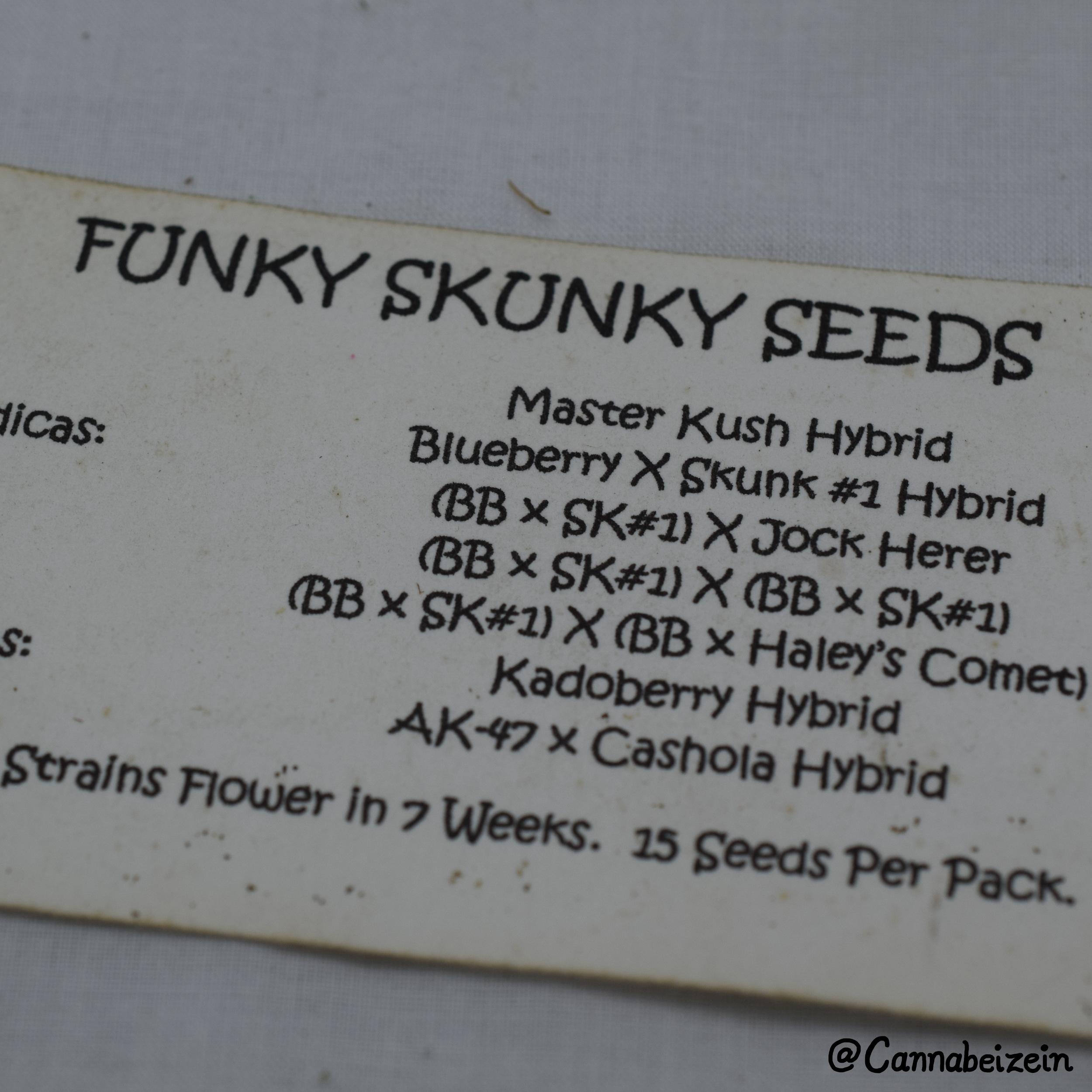 Cannabeizein 0211 - Funky Skunky Seeds - DSC_0779 copy.jpg