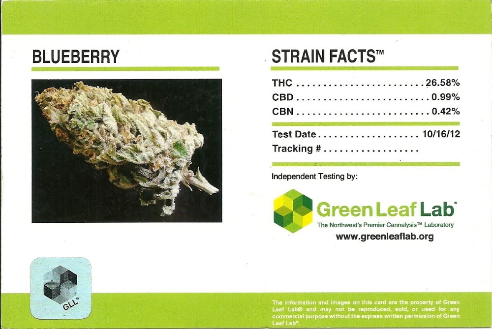 Outdoor Blueberry Strain Facts Card