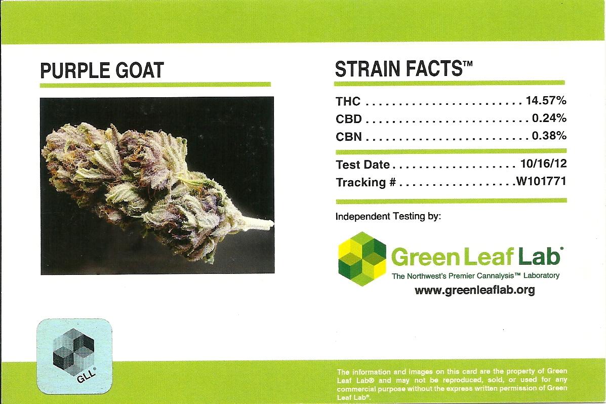 Purple Goat Strain Facts Card.