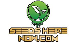 Seeds Here Now