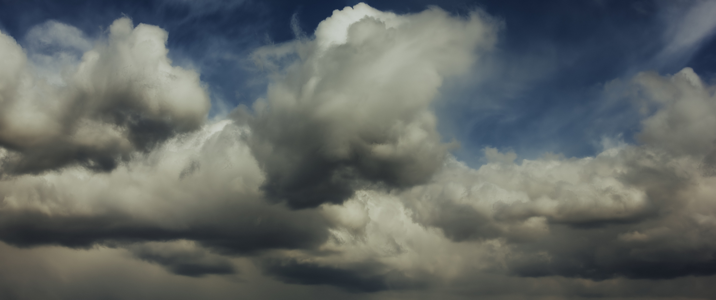 Dynamic cumulus mediocris are shaped by high velocity winds.