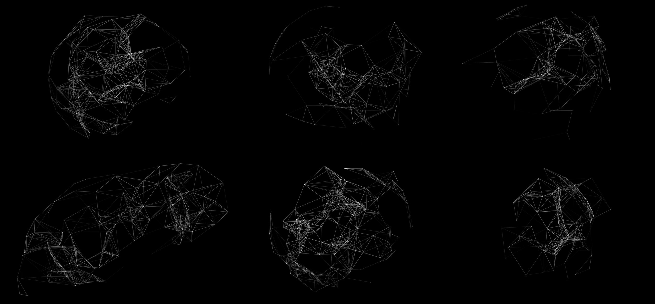 Abstract elements created in Plexus as visual syntax for the project.