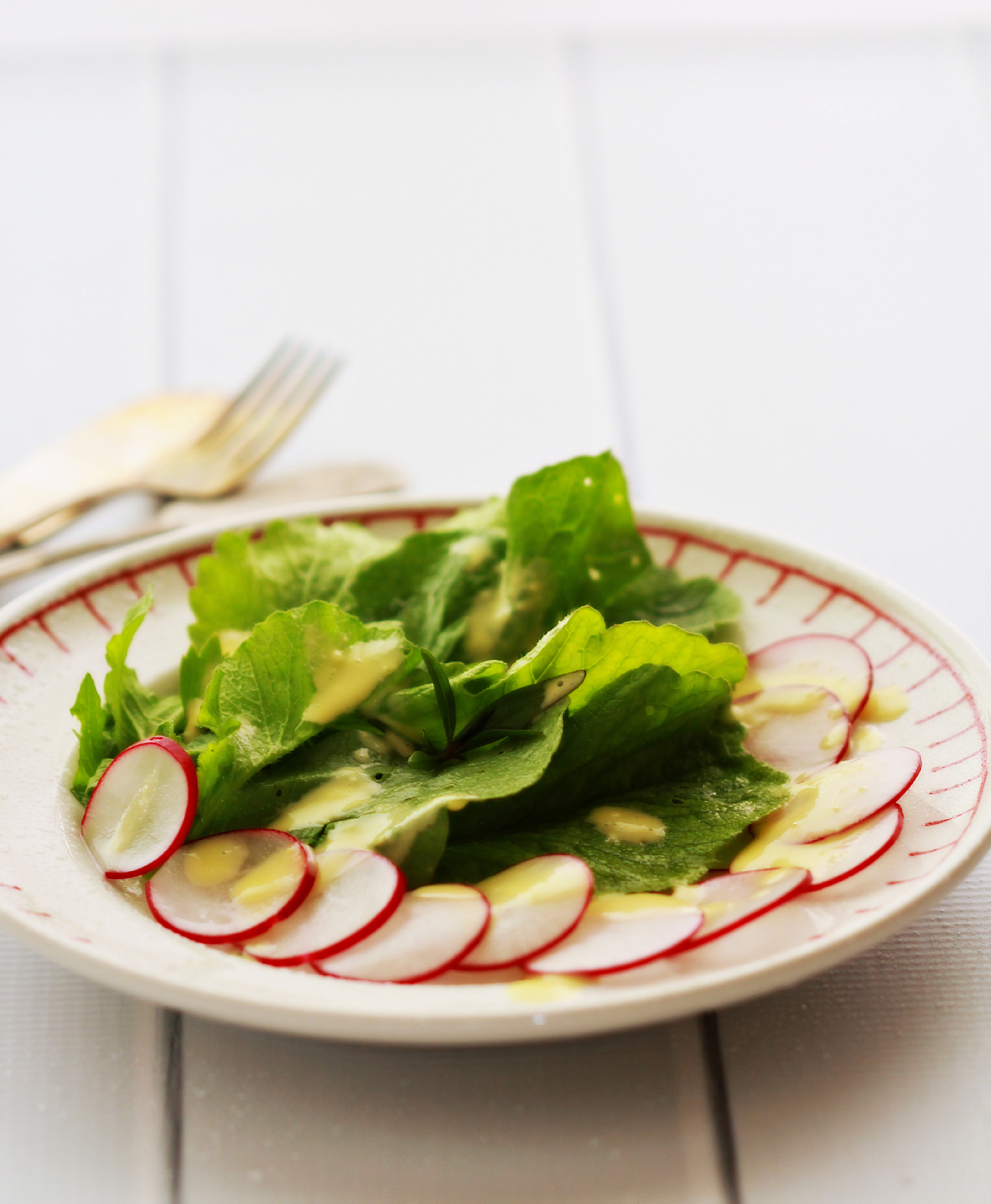 Radish Salad by Dena T Bray
