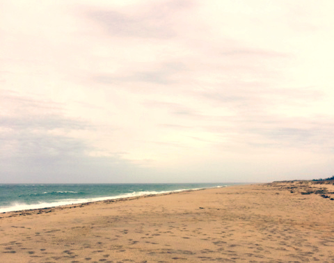 ©Nantucket Beach by Dena T Bray