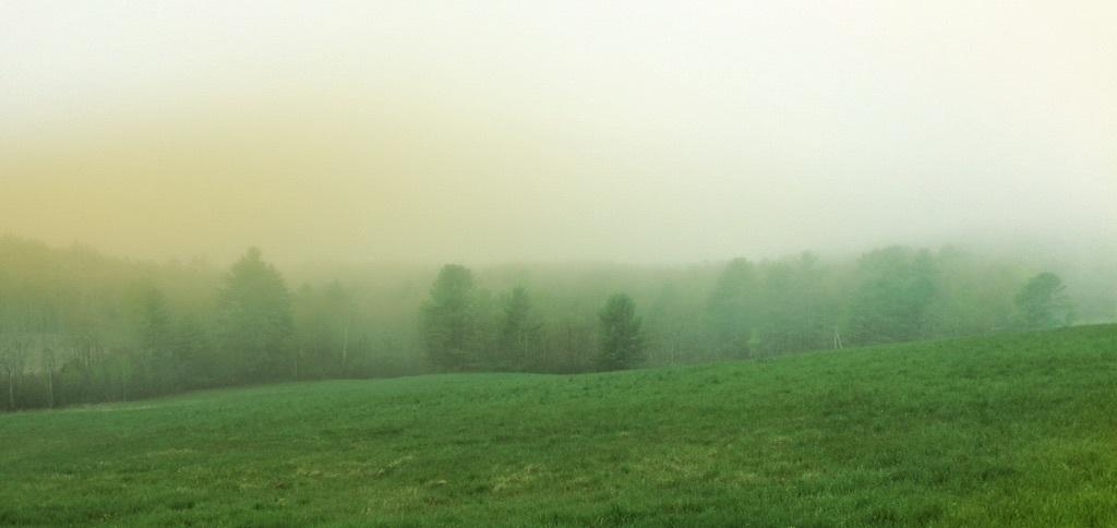 ©Etna Field by Dena T Bray
