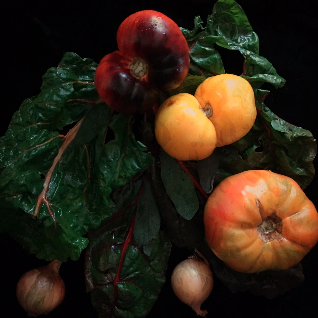 ©Late Summer Vegetables by Dena T Bray
