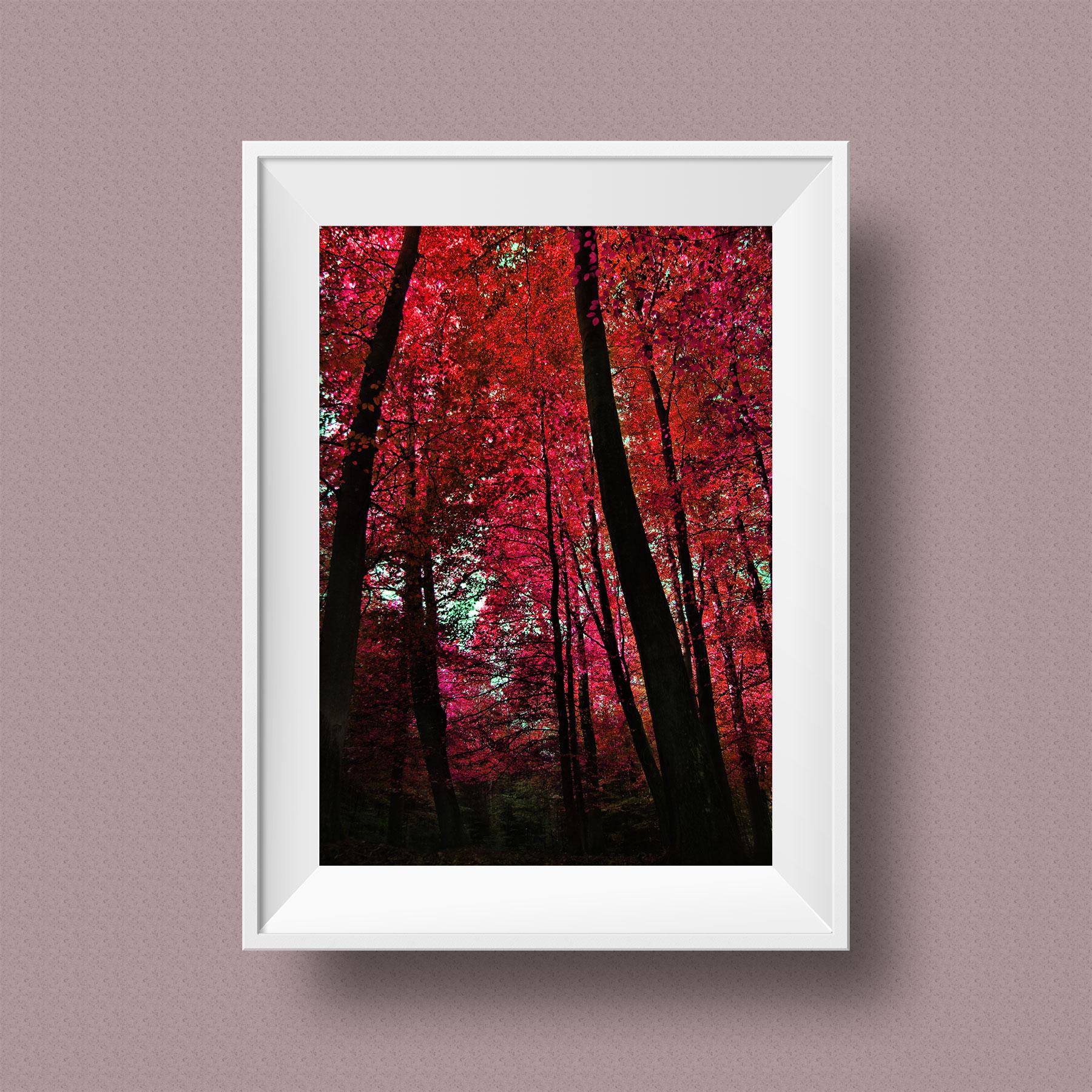 Mocks-Up-Frame-Vbd_RED_Leaves_s.jpg