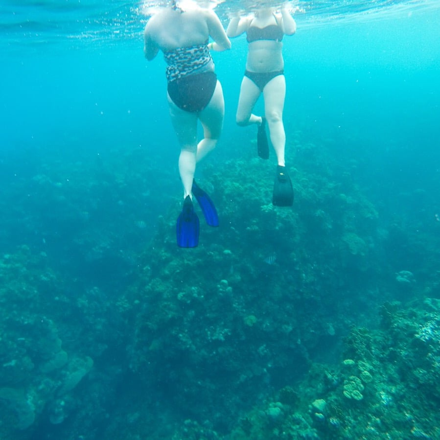 Snorkeling in Jamaica. Ugh, so gorgeous.