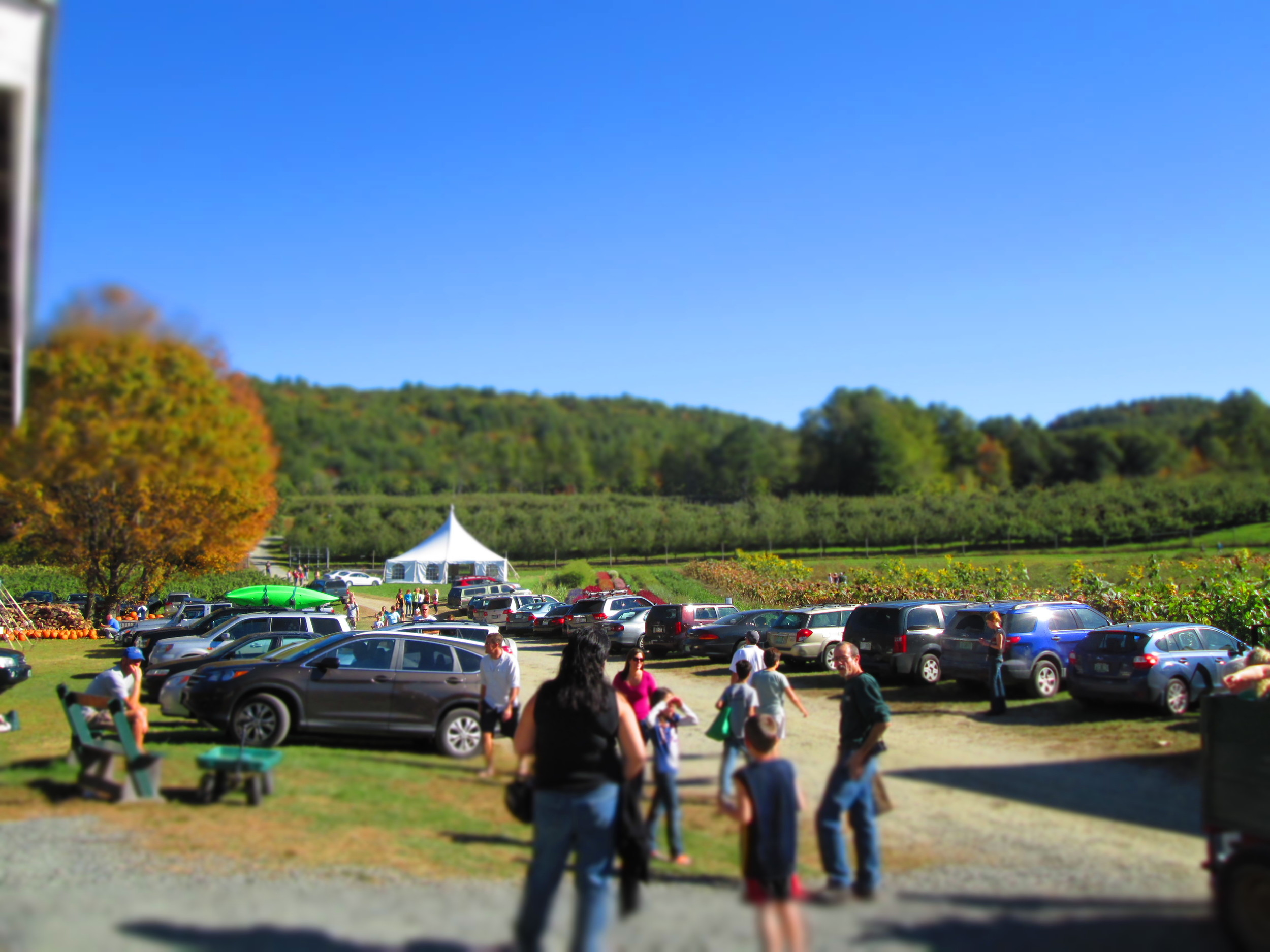 "Parking    We have ample onsite parking, all within easy walking distance to our barn store, pumpkin patch and corn maze.    Kid (and grownup) Safety     We are fortunate to have many guests here each weekend, and it's natural for everyone to be focused on getting outside and enjoying the open space and fresh air. To make this a safe visit for everyone, we ask that you keep a good eye on traffic, and particularly ""weather eye"" for the little ones who like to dart about."