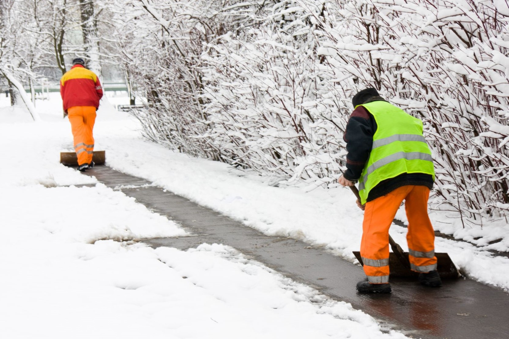 snow-services-07.jpg
