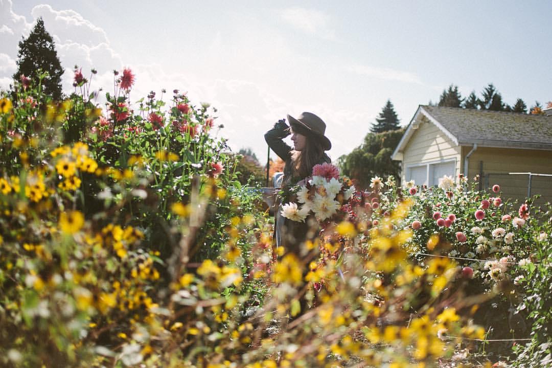 Wild and Wayward - Silverton, Oregon