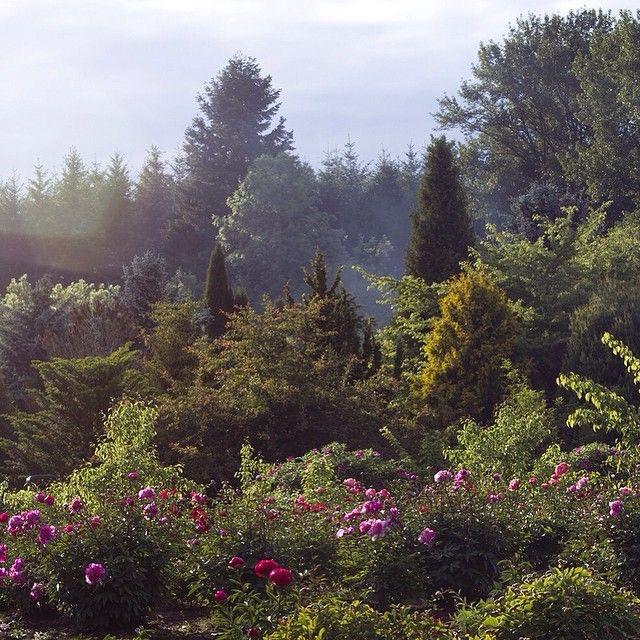 Brooks Gardens - Brooks, Oregon