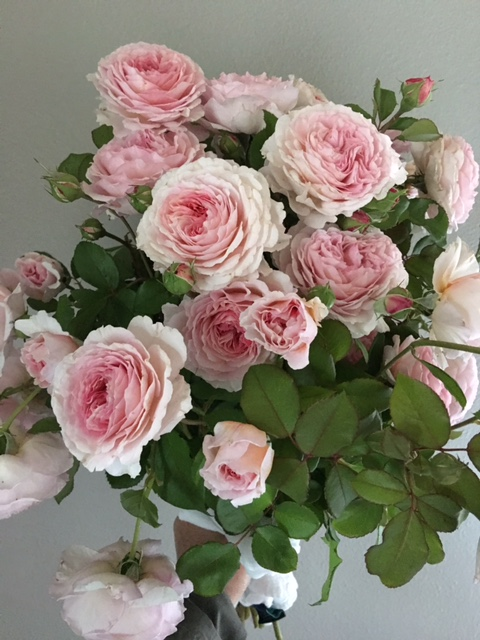 peonies for a bouquet of flowers