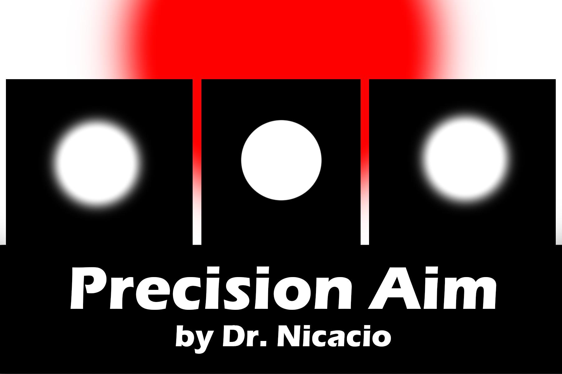 Precision Aim logo.jpg