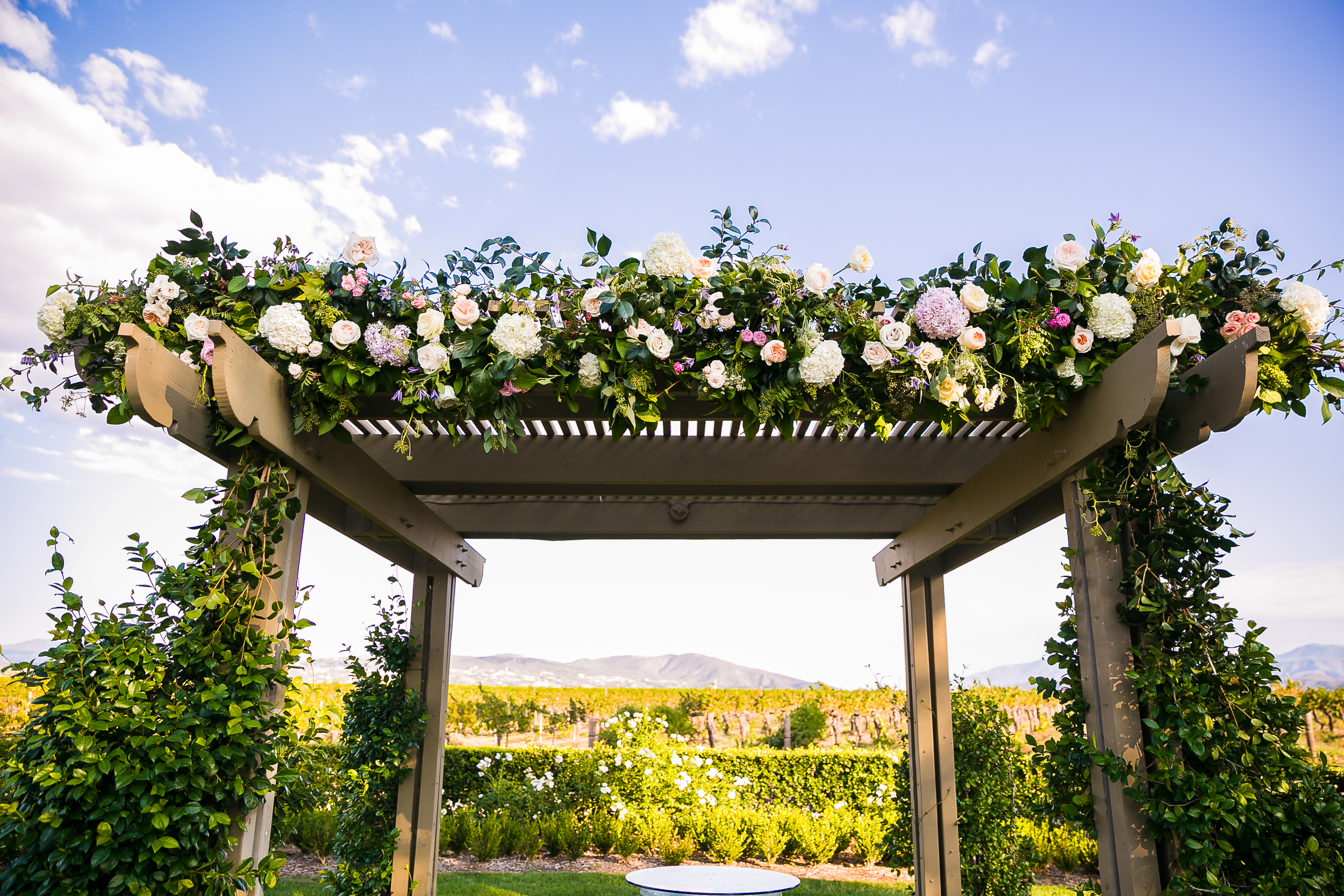 0407-JD-Ponte-Winery-Temecula-Wedding-Photography.jpg