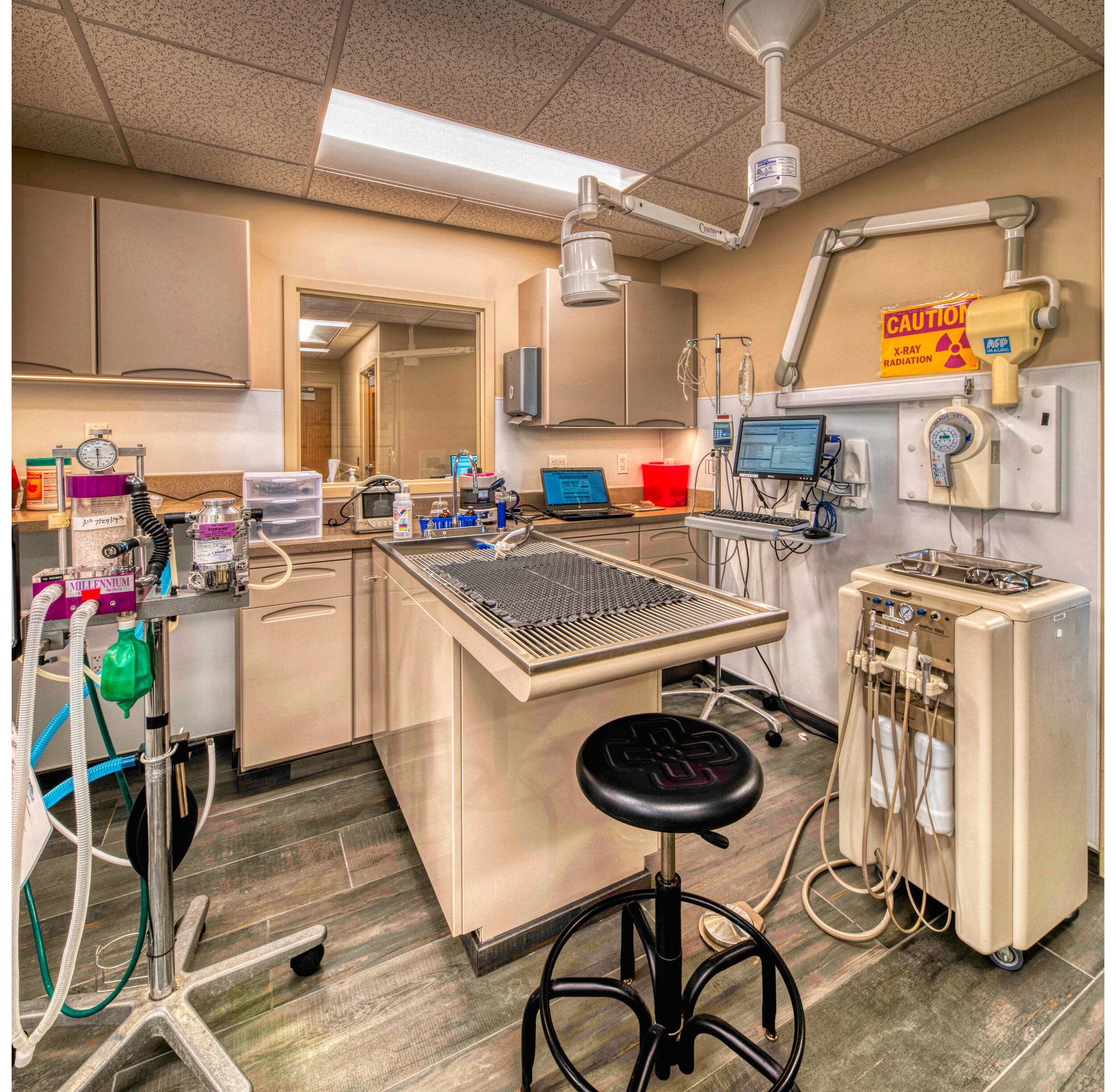 GilbertsvilleVeterinaryHospital_Dental1.jpg