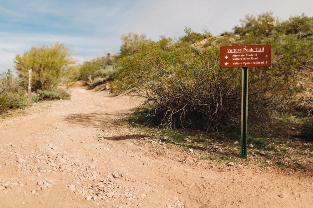 arizona-photographers-003.jpg