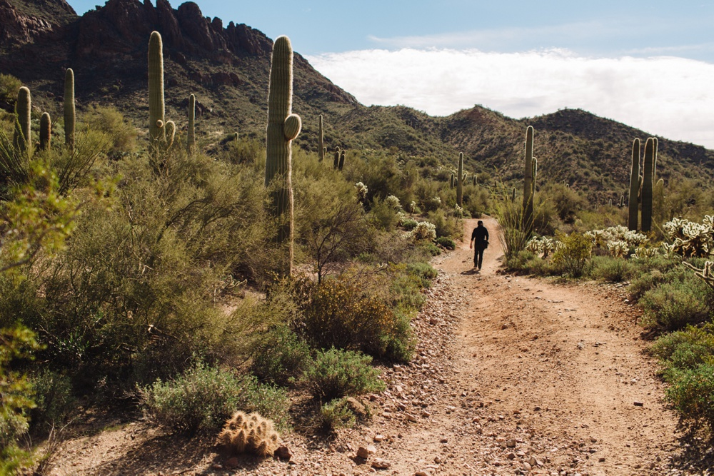 arizona-photographers-008.jpg