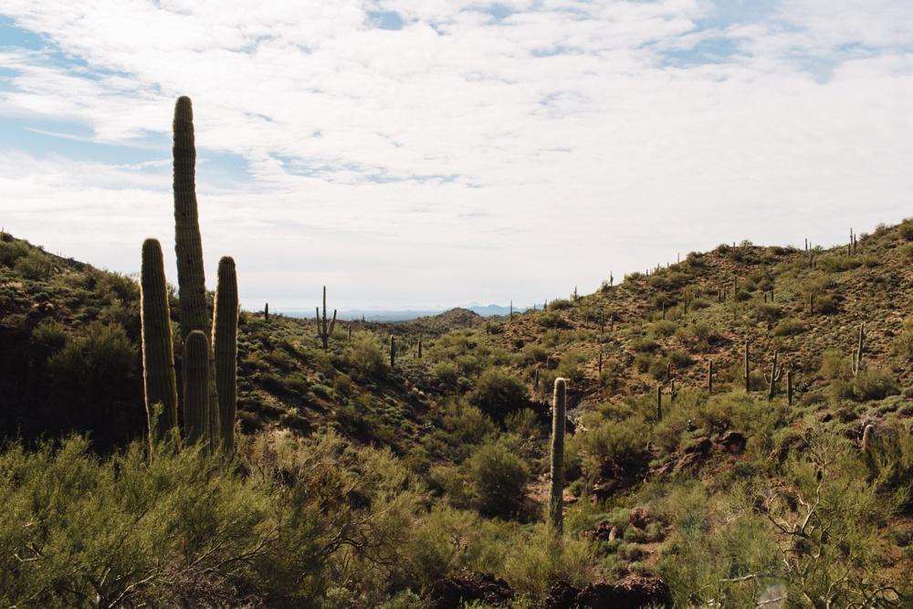 arizona-photographers-012.jpg
