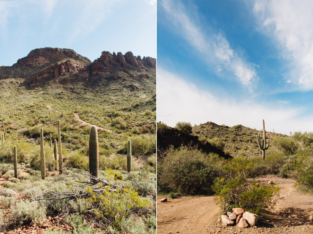 arizona-photographers-013.jpg