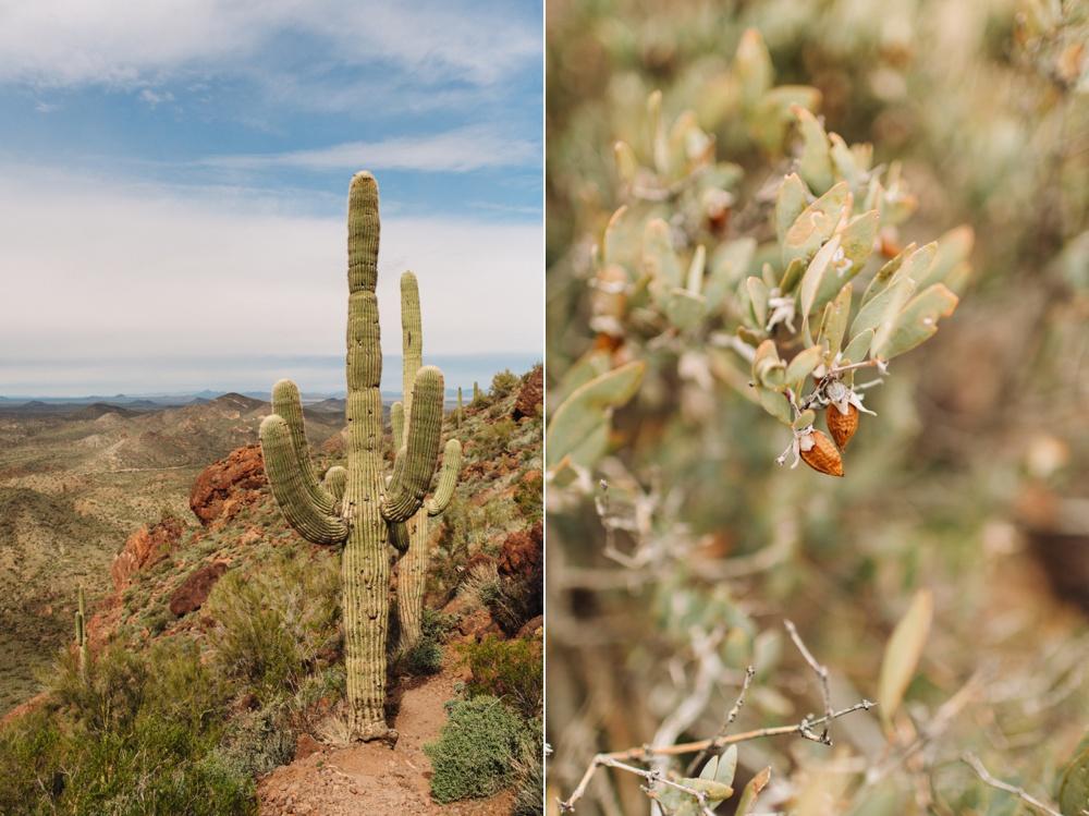 arizona-photographers-016.jpg