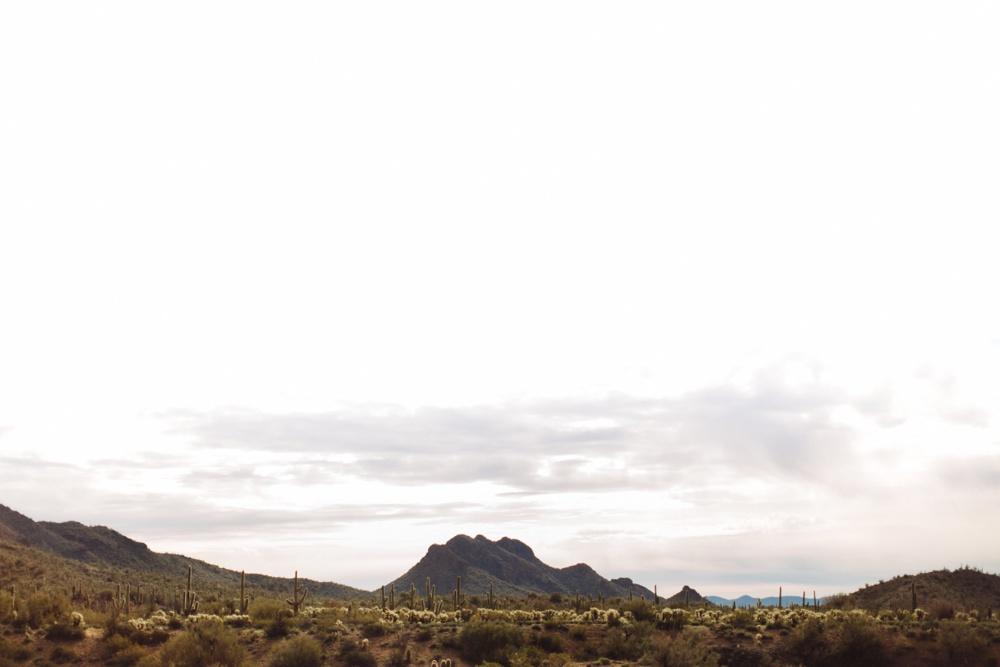 arizona-photographers-018.jpg