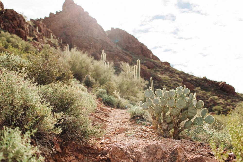 arizona-photographers-019.jpg