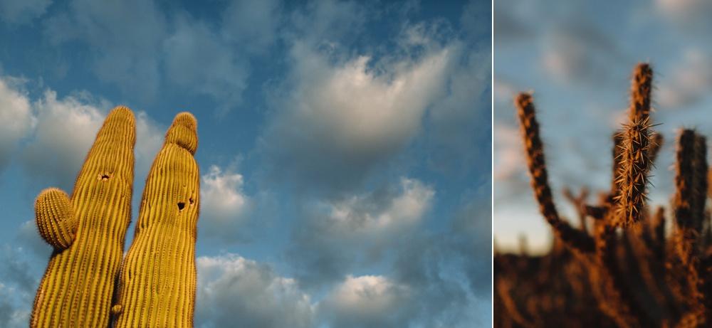 arizona-photographers-038.jpg