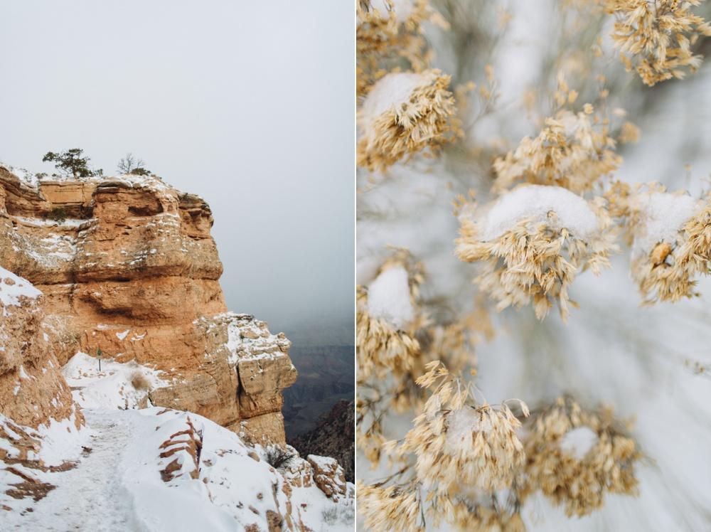 arizona-photographers-075.jpg