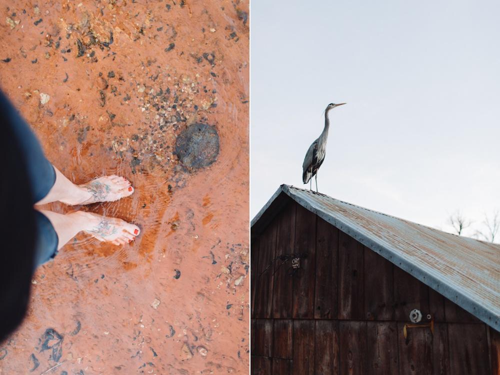 arizona-photographers-107.jpg