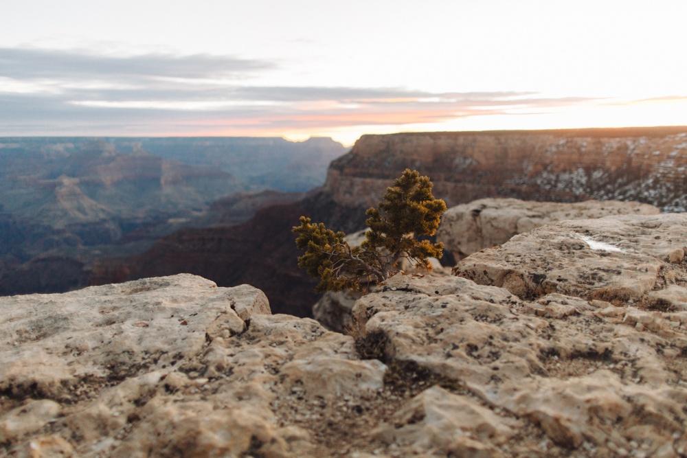 arizona-photographers-116.jpg