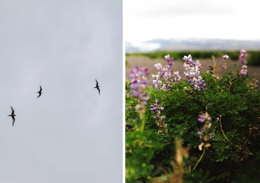 iceland-elopement-photographer-024.jpg