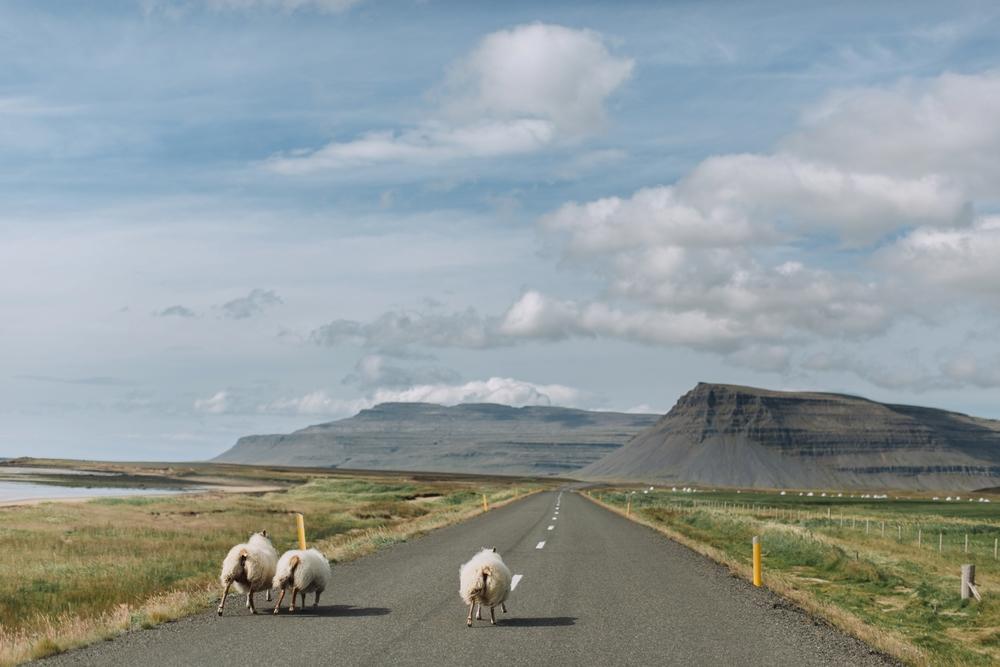 iceland-elopement-photographer-144.jpg